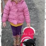 Hainuta catei Doggy Dress